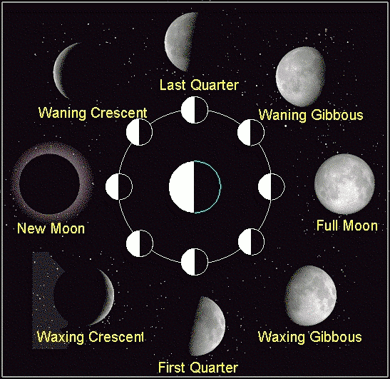 moon phases in order. The Phases of the Moon