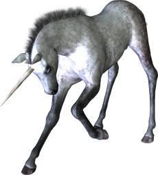 Unicorn - Magical Creatures