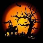 1306743_halloween_nightfree