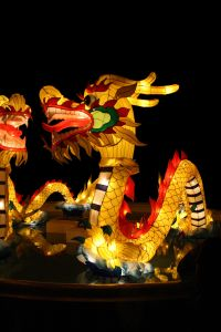 Soul Mates & Chinese Astrology