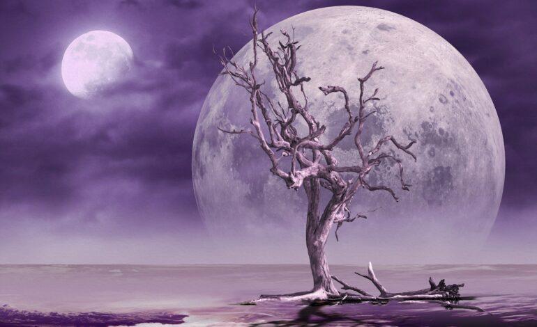 Moon Magic & the Zodiac